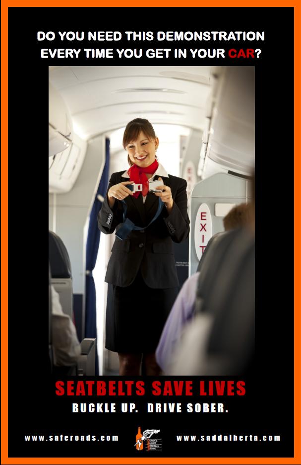 Seatbelt Demonstration Poster